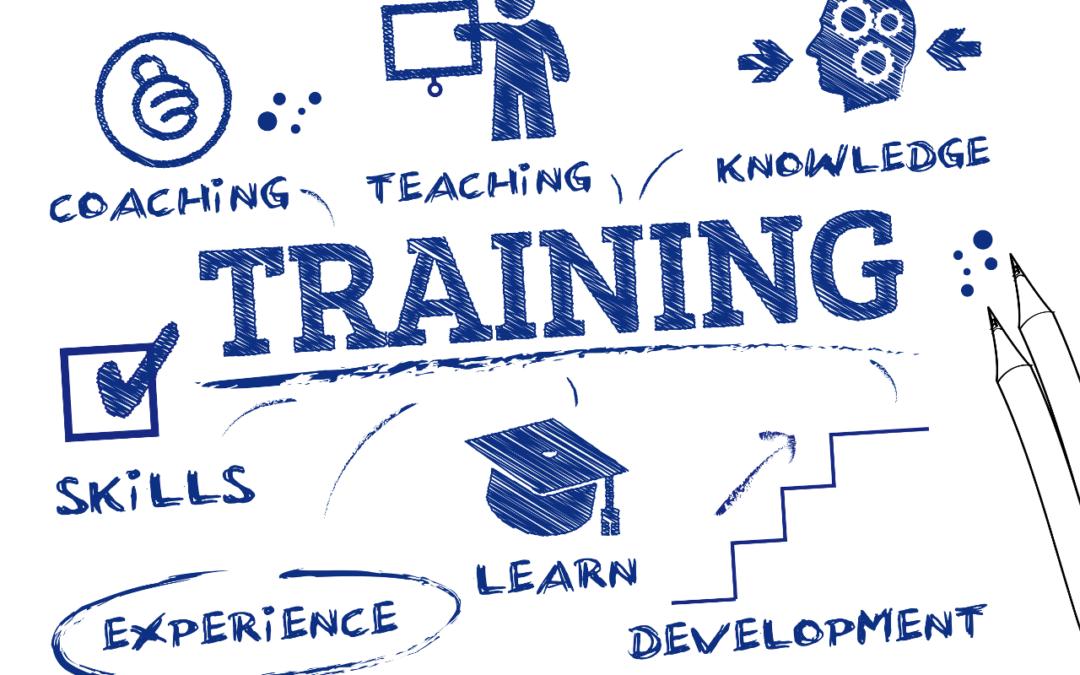 Corso di formazione per E-commerce basato su piattaforma Magento